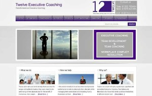 twelve executive coaching